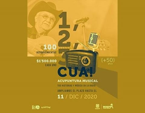 1, 2, 3, cua! Acupuntura musical, un reconocimiento a los músicos Bogotanos
